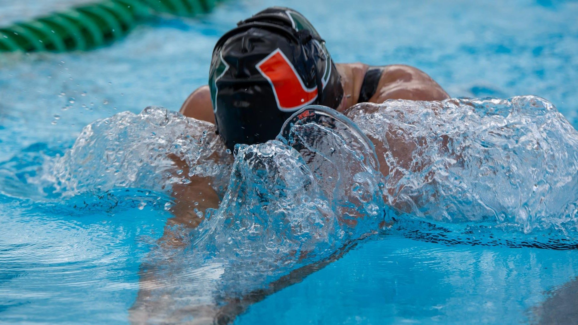 Swim / Dive Captures Fourth Straight vs. FGCU