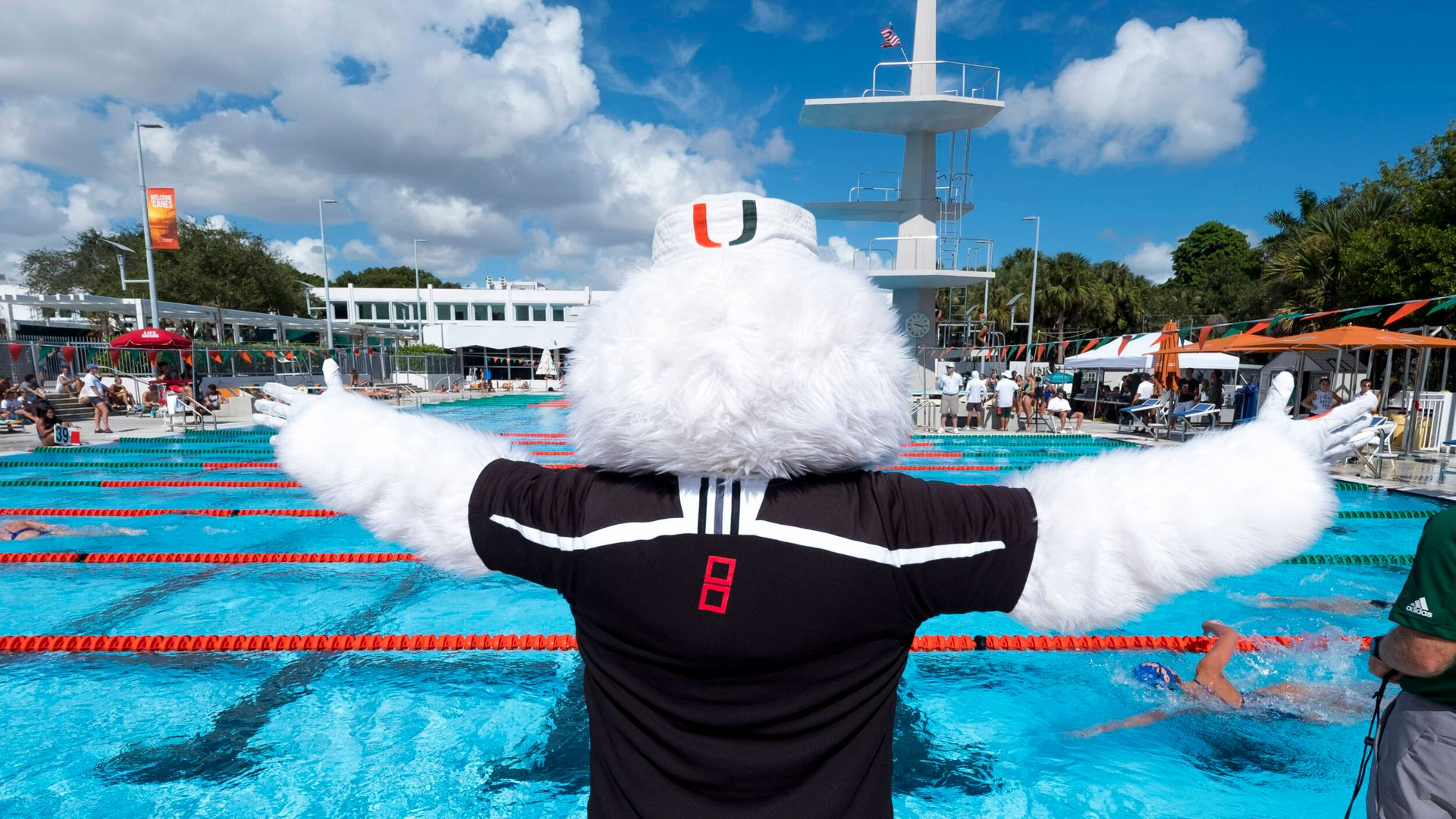 All Eight Miami Divers Qualify for NCAA Zones