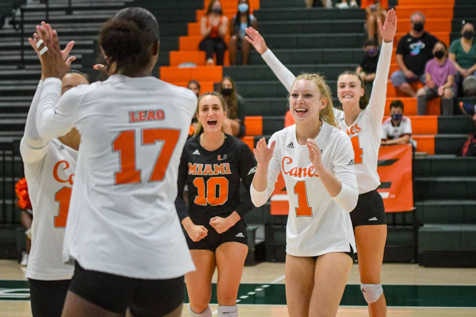 Volleyball Remains Unbeaten With 3-0 Victory