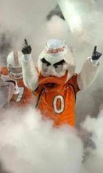 Don't MIss BankUnited CanesFest in Broward County